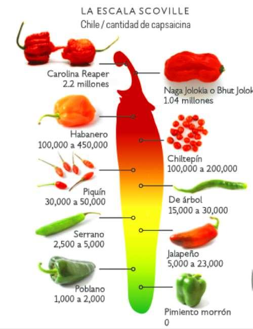 escala-scoville-chile-mas-picante