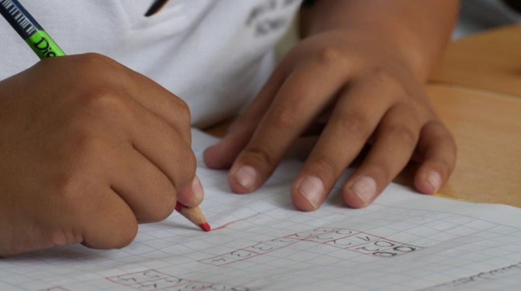 estudiantes mexicanos no entienden lo que leen