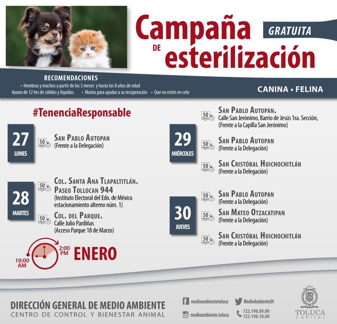 Calendario de esterilizaciones gratuitas en Toluca