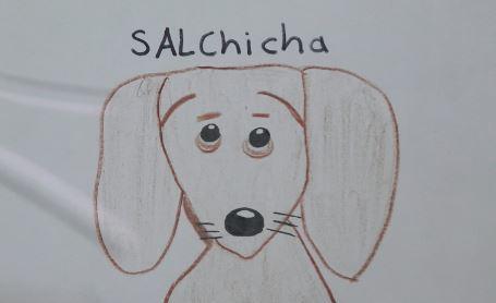 Niño busca a su perro extraviado con dibujos