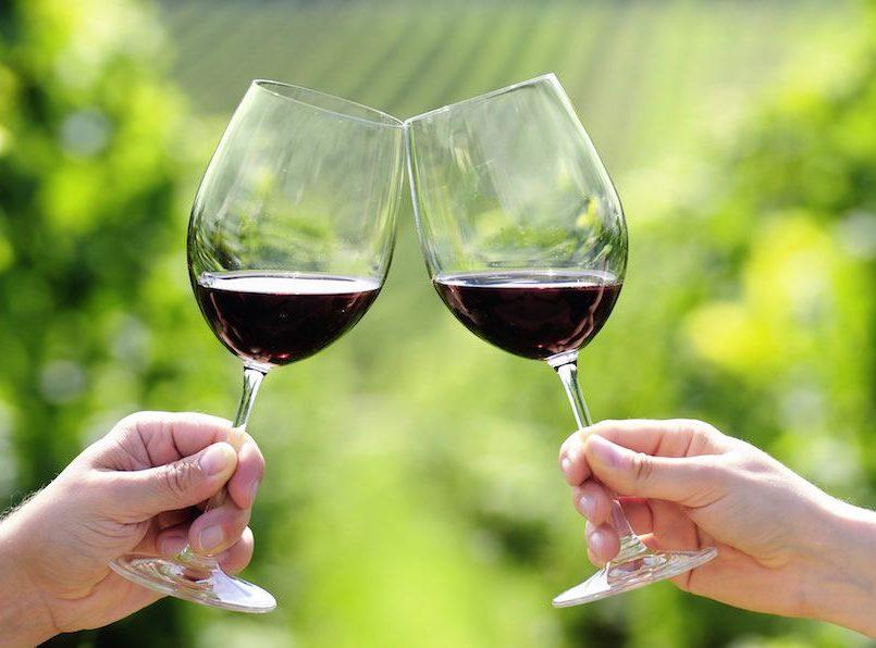 Tomar una copa de vino equivale a una hora de GYM