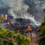 Joven provoca incendio en Tepoztlán por hacer un TikTok1