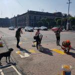 Pintan ciclovía enfrente de Palacio de Gobierno en Toluca2
