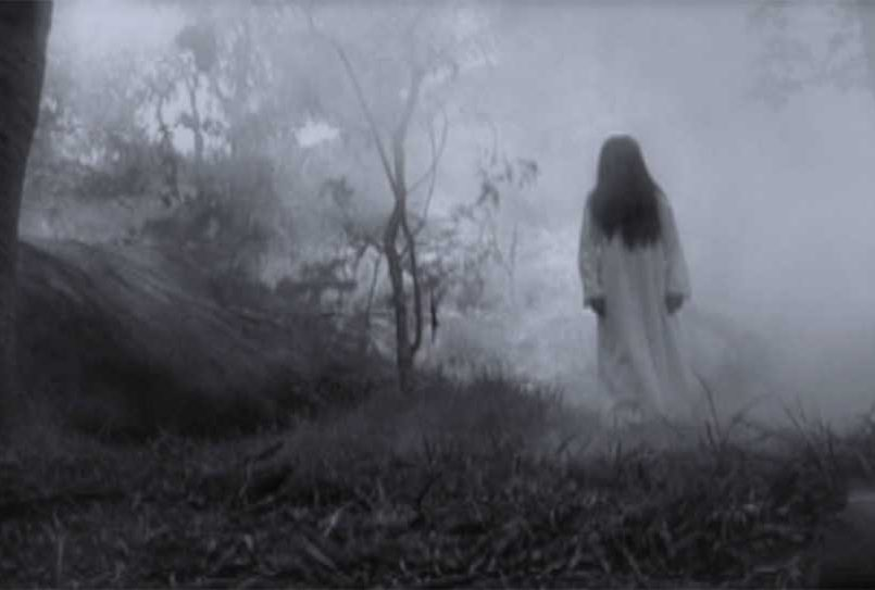 (Video) Campesino graba grito de la llorona mientras caminaba en bosque