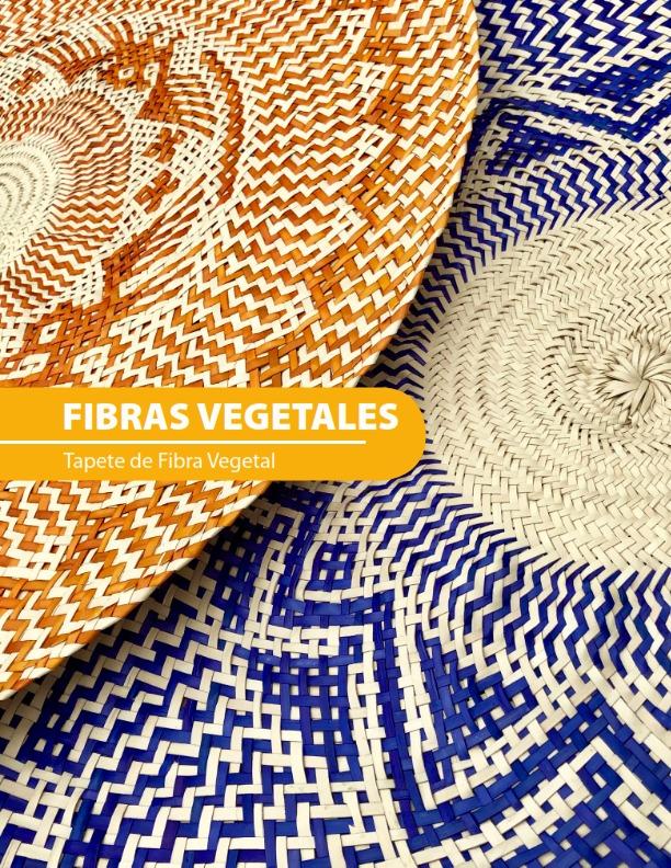 lanzan-catalogo-digital-para-apoyar-a-los-artesanos-de-toluca6