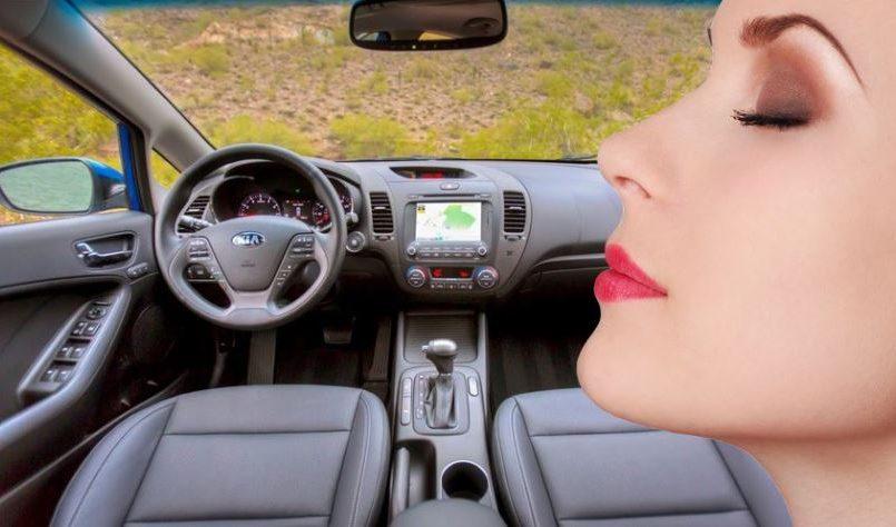 Dejara-de-existir-el-olor-a-coche-nuevo-a-partir-de-2021