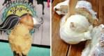 Prueba el rico helado de cempasúchil y pan de muerto en Toluca3