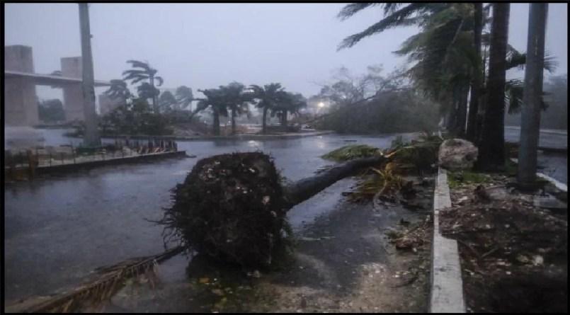 (Video) Los vientos del huracán Delta se escuchaban como un escalofriante llanto