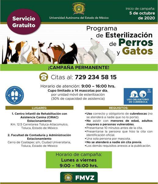uaemex-esteriliza-a-tus-perros-y-gatos-gratis-160494