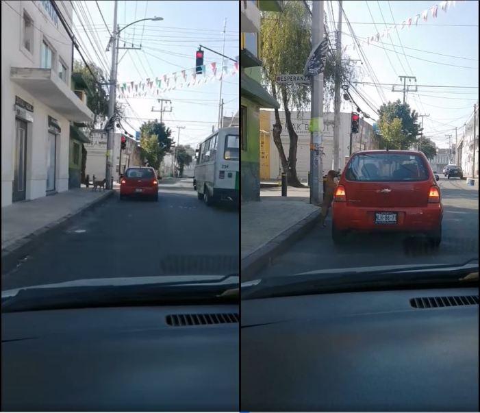 video-perrito-persigue-el-carro-de-su-duena-que-lo-abandono-en-la-calle5