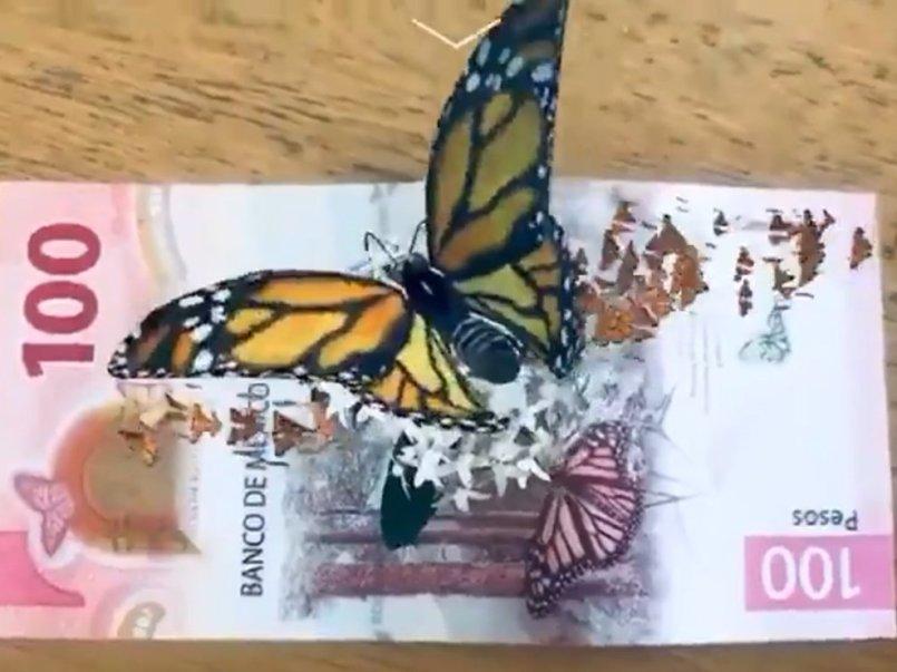 Como-ver-las-mariposas-monarca-en-el-nuevo-billete-de-100-pesos