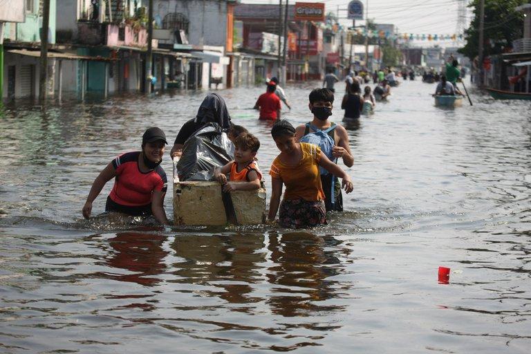 captan-cocodrilo-tras-inundaciones-en-tabasco