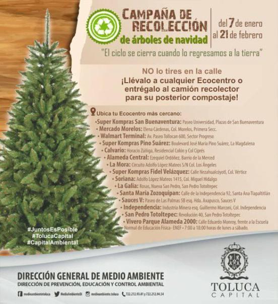 reciclaje-arbols-de-navidad-edomex