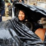 viral-mujer-construye-casa-con-bolsas-de-platico-para-vivir-con-sus-perritos-160494