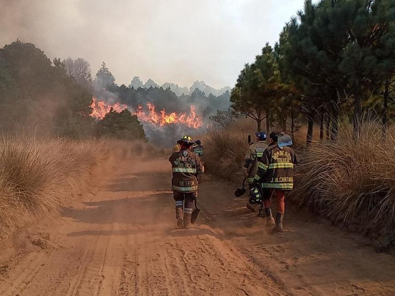 juan-rodolfo-sanchez-incendio-en-la-zona-del-nevado-de-toluca-fue-provocado
