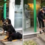 mujer-va-al-banco-con-sus-perros-y-se-vuelve-viral-video-2-160494