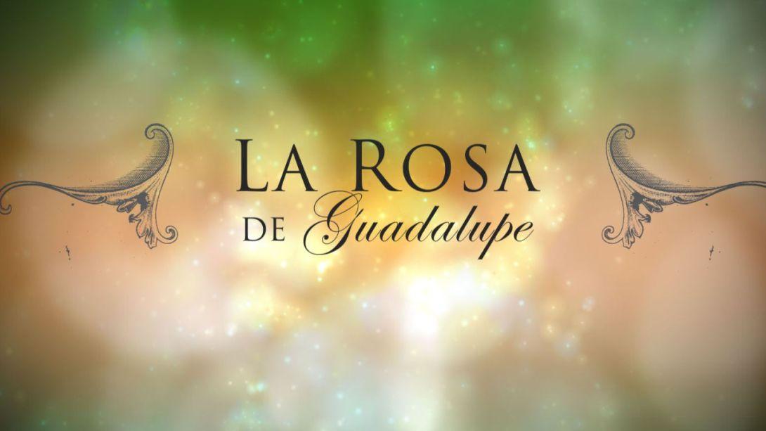 rosa-de-guadalupe-exhibe-al-gobierno-mexicano-revelan-censura-160494